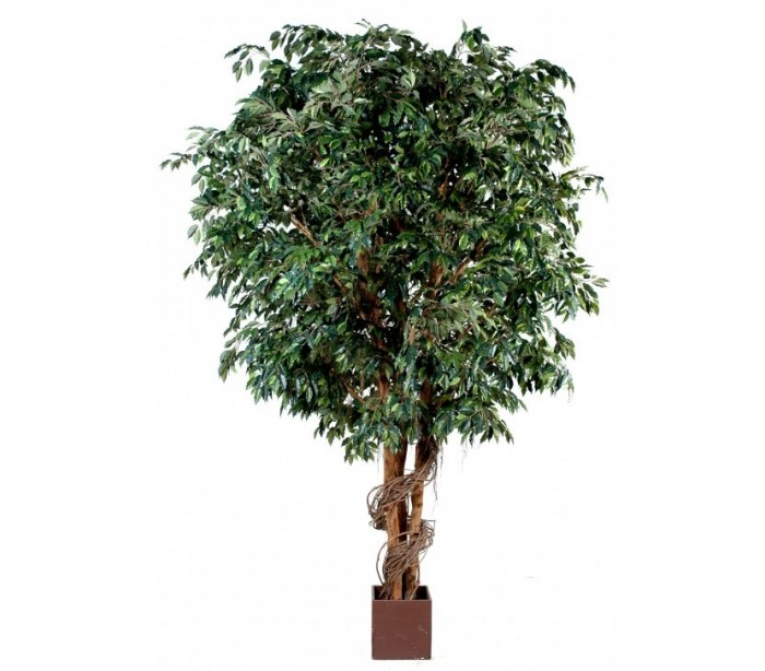 Stort kunstigt ficustræ h650 cm fra ifø på lepong.dk