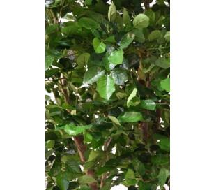 Stort kunstigt træ H280 cm