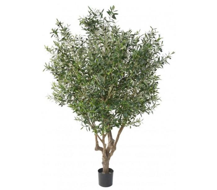 Image of   Stort kunstigt Oliventræ H215 cm