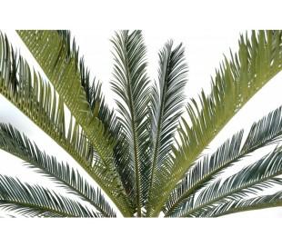 Stort kunstigt palmetræ H200 cm