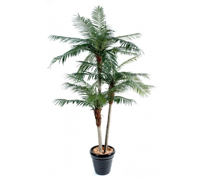 Image of   Phoenix kunstigt træ H225 cm