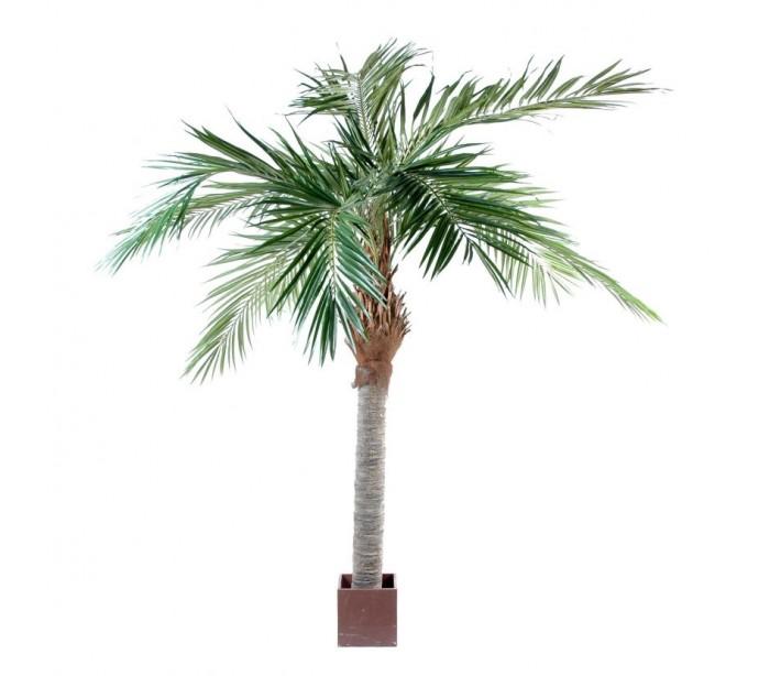 Image of   Stort kunstigt palmetræ H320 cm