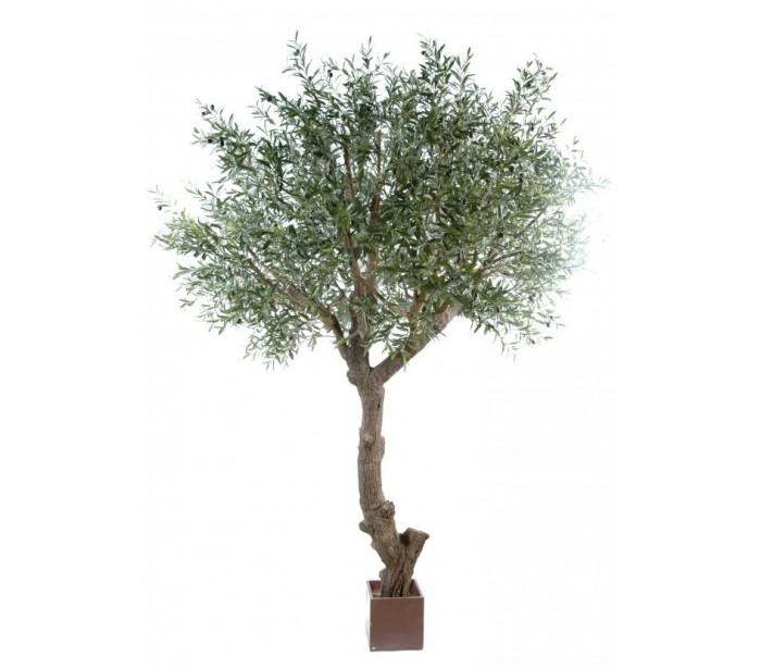 Image of   Stort kunstigt Oliventræ H270 cm