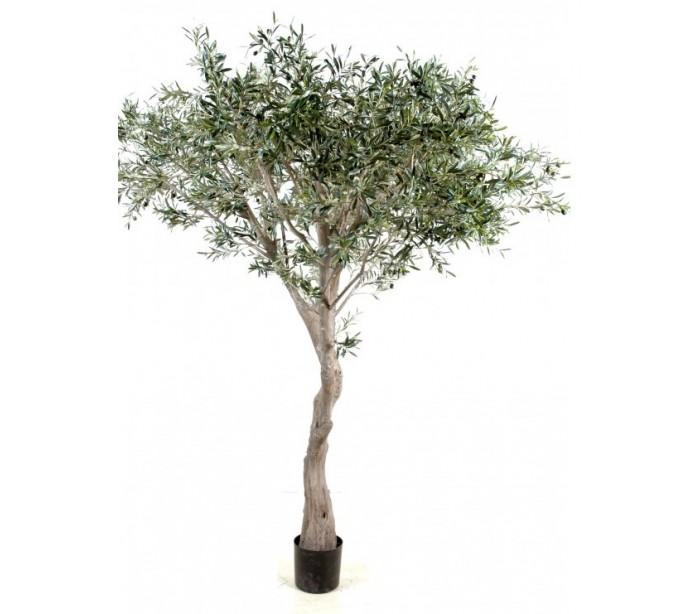 Image of   Stort kunstigt Oliventræ H240 cm